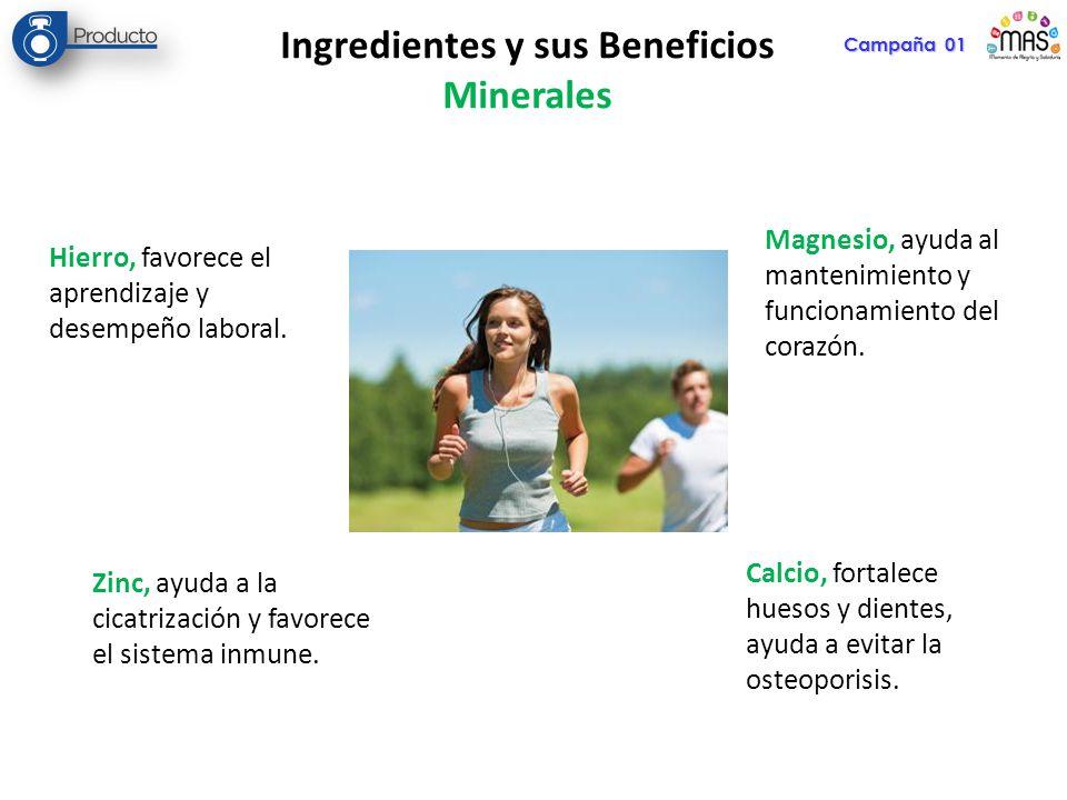 Campaña 01 Ingredientes y sus Beneficios Minerales Hierro, favorece el aprendizaje y desempeño laboral. Zinc, ayuda a la cicatrización y favorece el s