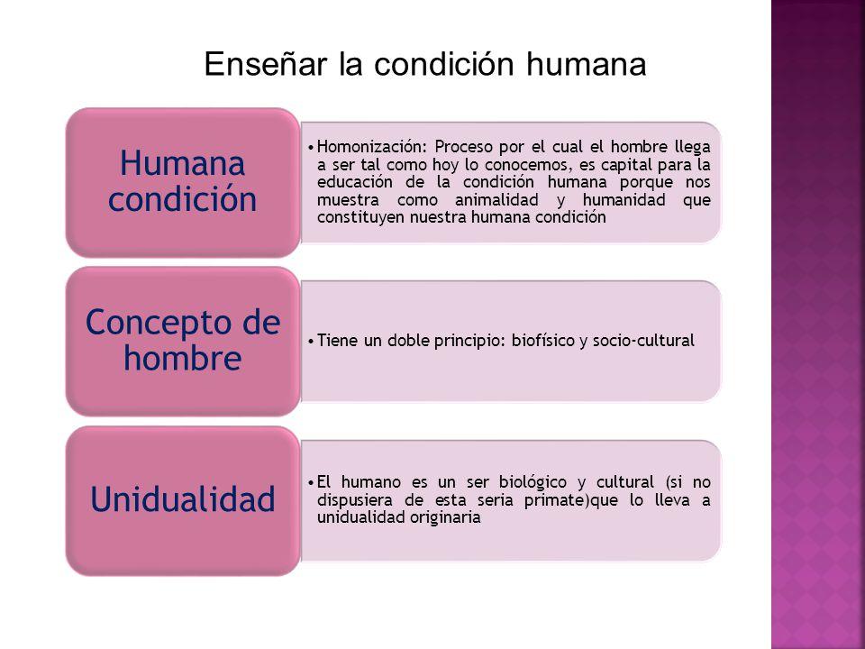 Enseñar la condición humana Homonización: Proceso por el cual el hombre llega a ser tal como hoy lo conocemos, es capital para la educación de la cond