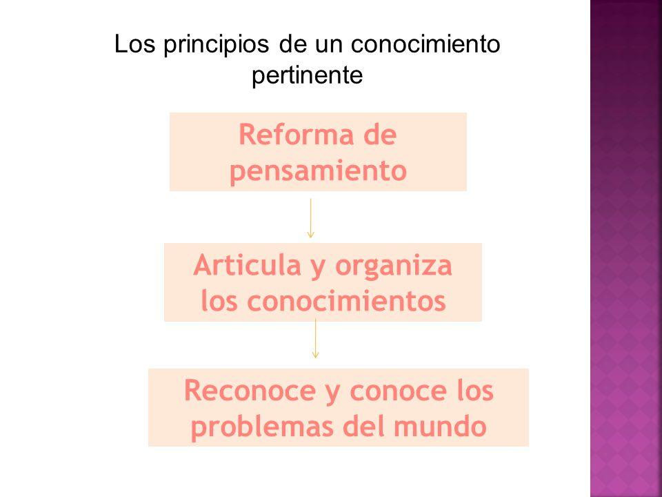 Reforma de pensamiento Articula y organiza los conocimientos Reconoce y conoce los problemas del mundo Los principios de un conocimiento pertinente