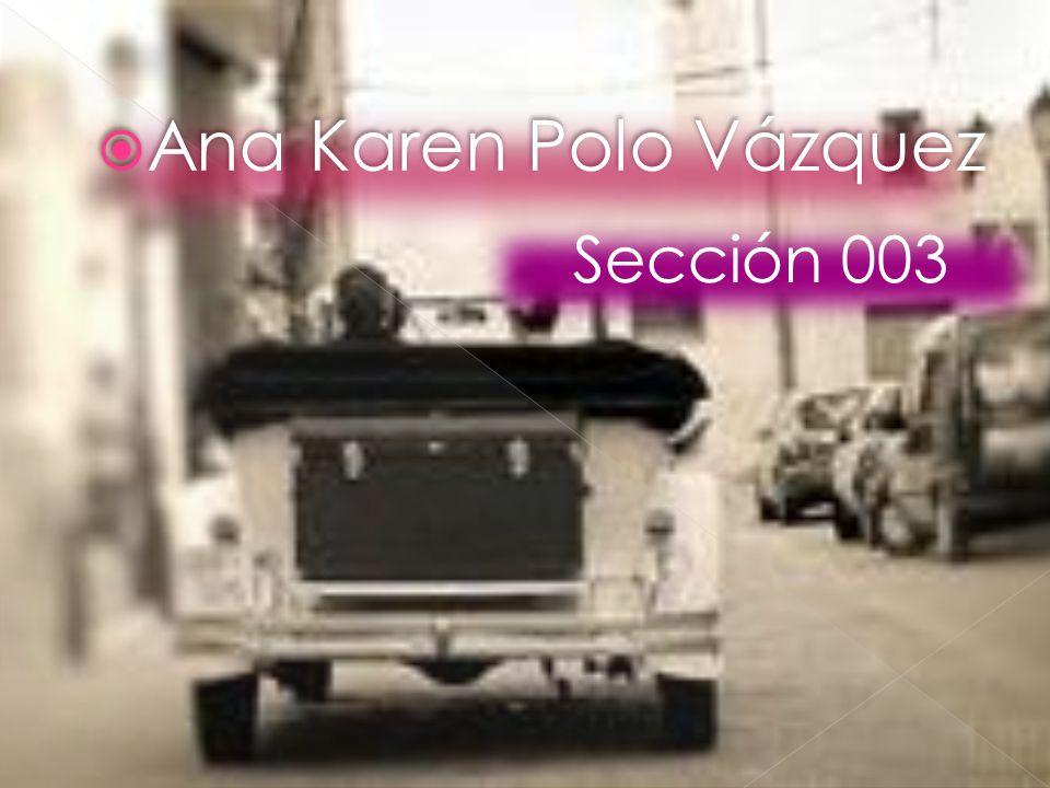 Ana Karen Polo Vázquez Sección 003
