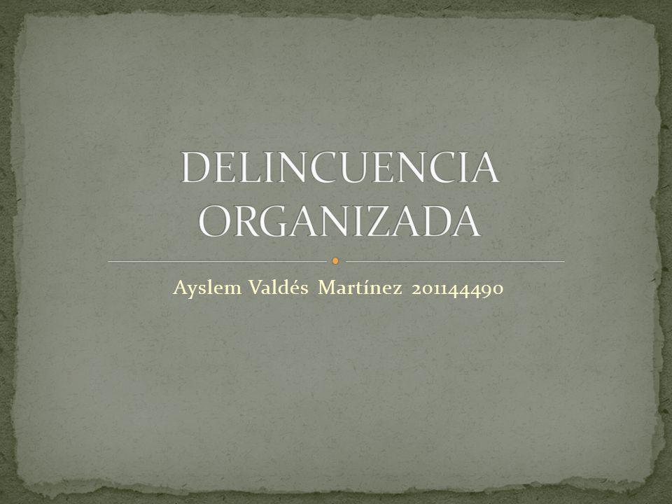 Ayslem Valdés Martínez 201144490