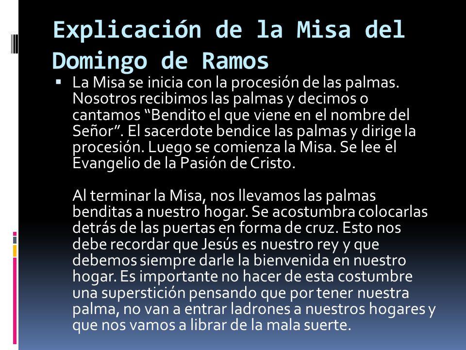 Explicación de la Misa del Domingo de Ramos La Misa se inicia con la procesión de las palmas. Nosotros recibimos las palmas y decimos o cantamos Bendi