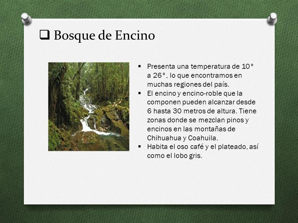 Humedad Son los ecosistemas en los que el agua es el factor que determina las características de la vegetación y la fauna. Existen 5 tipos: Marino, En