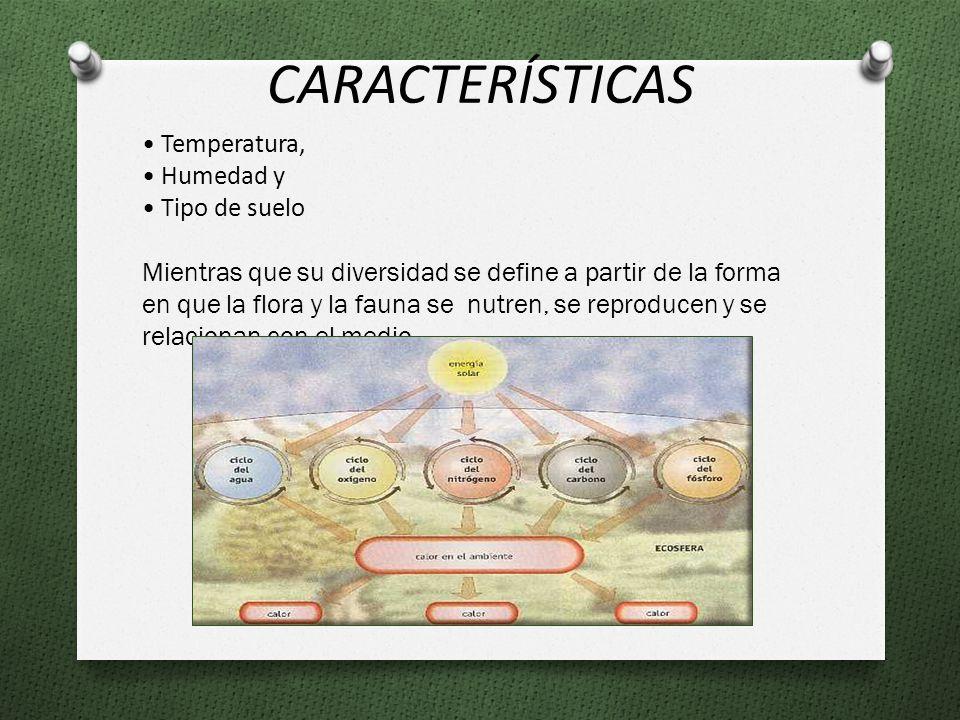 Temperatura, Humedad y Tipo de suelo Mientras que su diversidad se define a partir de la forma en que la flora y la fauna se nutren, se reproducen y se relacionan con el medio.