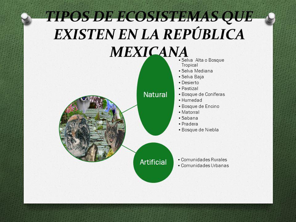 TIPOS DE ECOSISTEMAS QUE EXISTEN EN LA REPÚBLICA MEXICANA Natural Selva Alta o Bosque Tropical Selva Mediana Selva Baja Desierto Pastizal Bosque de Coníferas Humedad Bosque de Encino Matorral Sabana Pradera Bosque de Niebla Artificial Comunidades Rurales Comunidades Urbanas