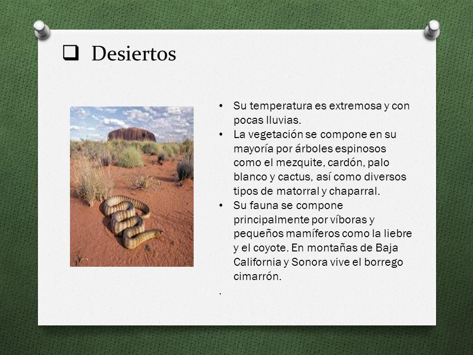 Desiertos Su temperatura es extremosa y con pocas lluvias.