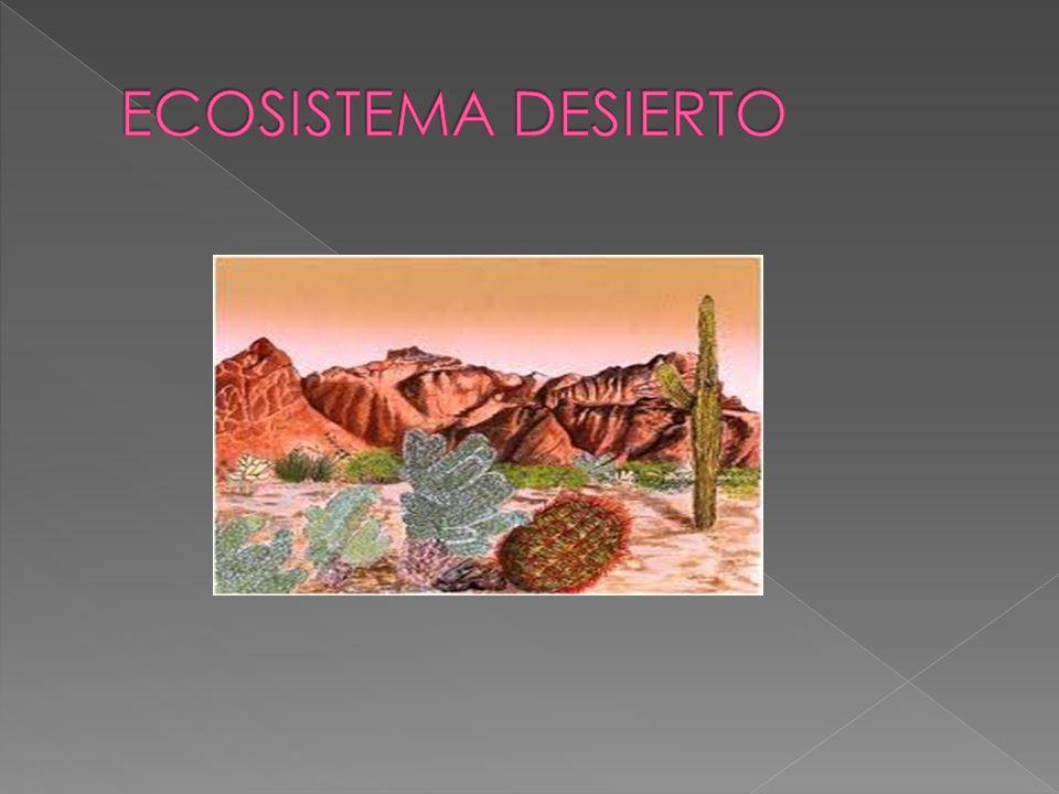 Desierto propiamente dicho: Poseen flora y fauna muy escasa.
