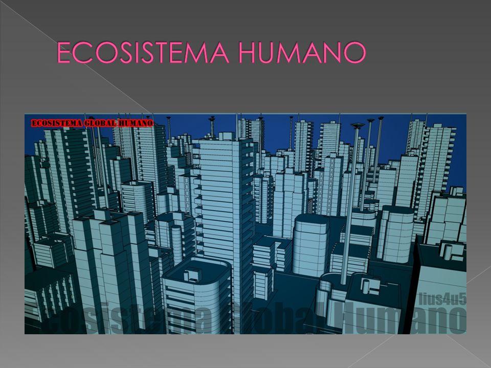 Es el ecosistema no natural con control o intervención del ser humano.ser humano Medio urbano.