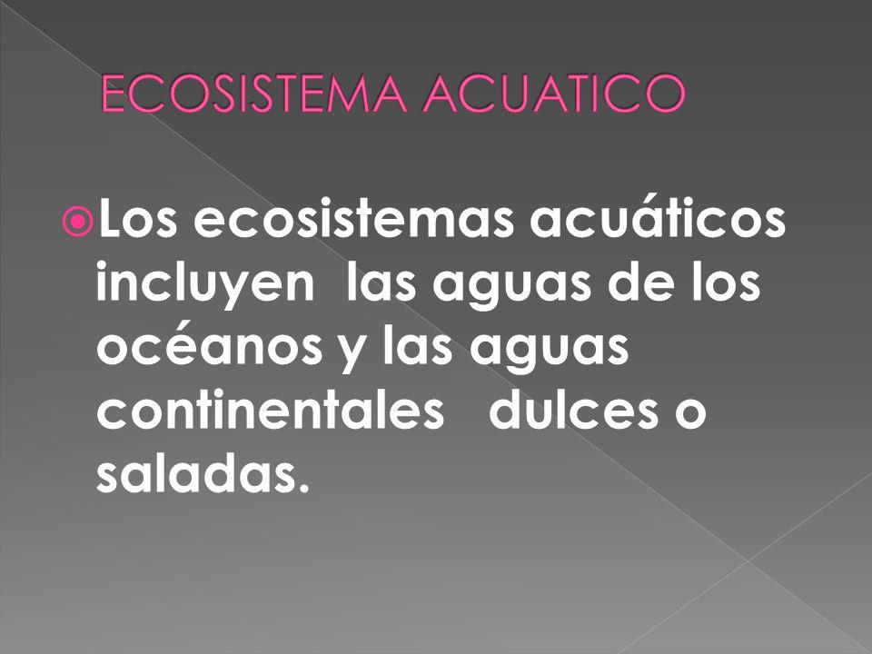 Un ecosistema es un sistema natural que está formado por un conjunto de organismos vivos (biocenosis) y el medio físico donde se relacionan (biotopo).