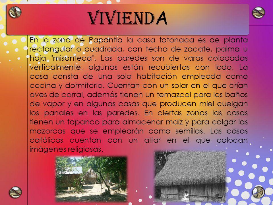 VIVIEND A En la zona de Papantla la casa totonaca es de planta rectangular o cuadrada, con techo de zacate, palma u hoja misanteca .
