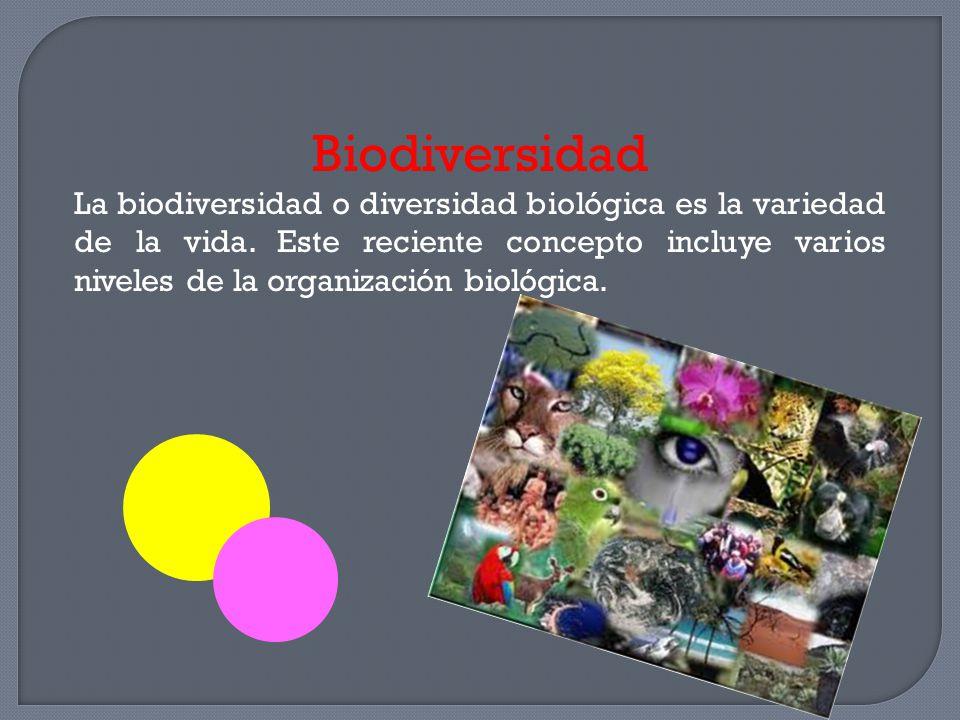 Biodiversidad La biodiversidad o diversidad biológica es la variedad de la vida. Este reciente concepto incluye varios niveles de la organización biol