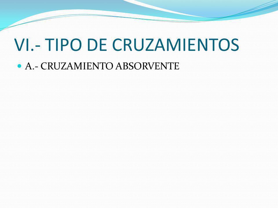 V.- HOMOCIGOSIS Y HETEROCIGOSIS A.- CRAZAMIENTO EN LINEA B.- CRUZAMIENTO ABIERTO