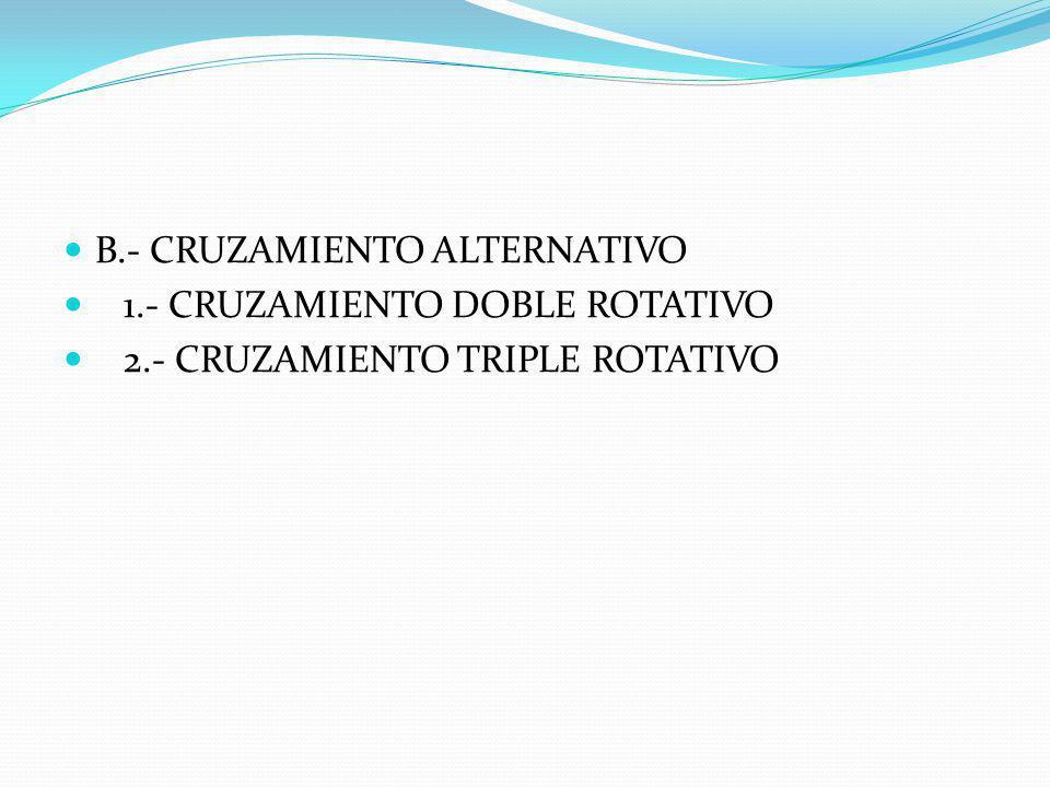 VI.- TIPO DE CRUZAMIENTOS A.- CRUZAMIENTO ABSORVENTE