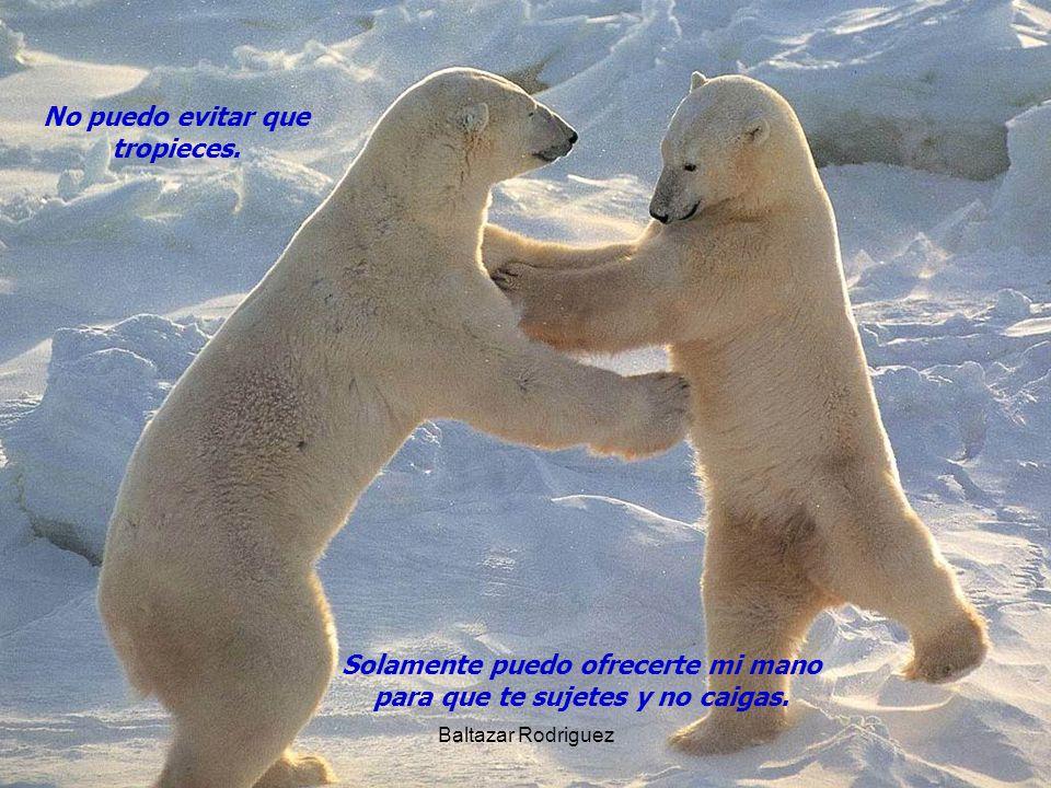 Baltazar Rodriguez No puedo evitar que tropieces. Solamente puedo ofrecerte mi mano para que te sujetes y no caigas.