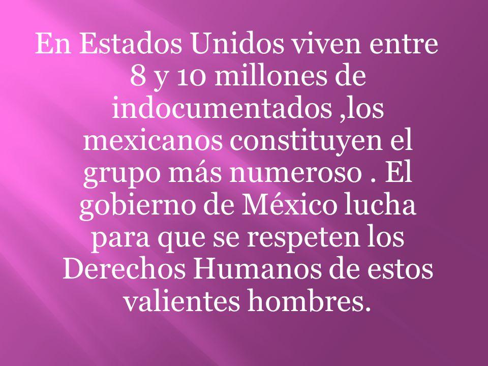 En Estados Unidos viven entre 8 y 10 millones de indocumentados,los mexicanos constituyen el grupo más numeroso. El gobierno de México lucha para que