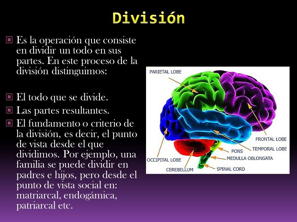 Es la operación que consiste en dividir un todo en sus partes. En este proceso de la división distinguimos: El todo que se divide. Las partes resultan