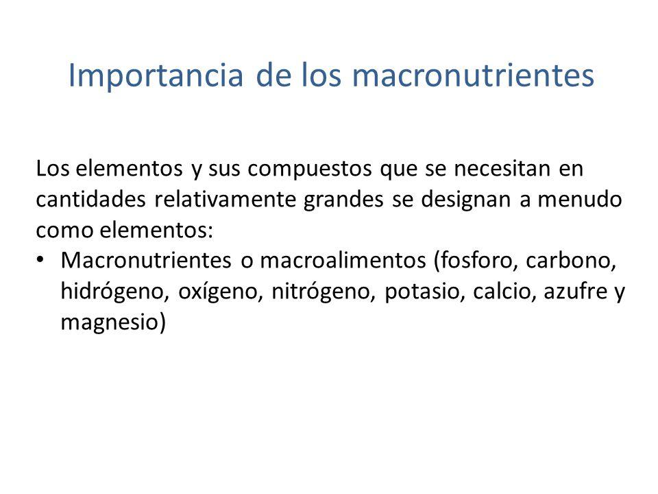 Importancia de los macronutrientes… Hutchinson (1957) describe el caso del fosforo como: «de todos los elementos presentes en los seres vivos, es probable que el fosforo sea el mas importante ecológicamente, porque la razón de éste a los demás elementos en los organismos suele ser considerablemente mayor que la razón en las fuentes primarias de los elementos biológicos.