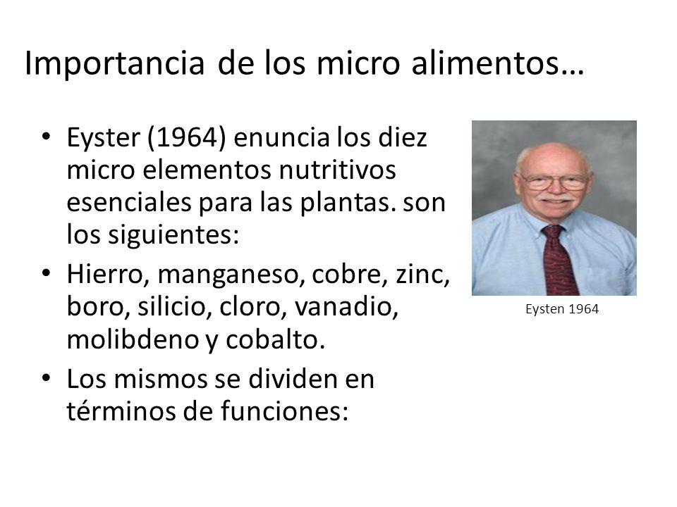 Para la fotosíntesis: (manganeso, hierro, cloro, zinc y vanadio).