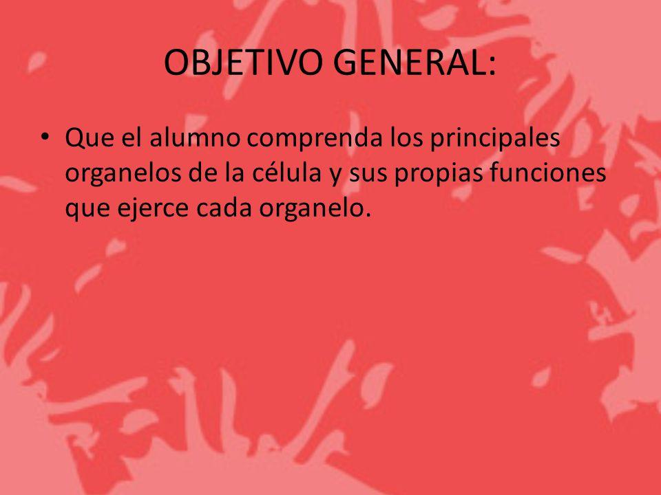 OBJETIVO GENERAL: Que el alumno comprenda los principales organelos de la célula y sus propias funciones que ejerce cada organelo.