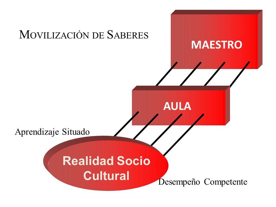 MAESTRO Aprendizaje Situado M OVILIZACIÓN DE S ABERES Desempeño Competente AULA Realidad Socio Cultural