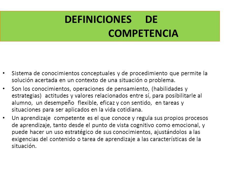 DEFINICIONES DE COMPETENCIA Sistema de conocimientos conceptuales y de procedimiento que permite la solución acertada en un contexto de una situación o problema.