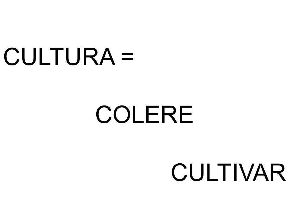 CULTURA = COLERE CULTIVAR