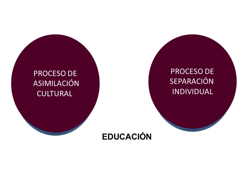 PROCESO DE ASIMILACIÓN CULTURAL PROCESO DE SEPARACIÓN INDIVIDUAL EDUCACIÓN