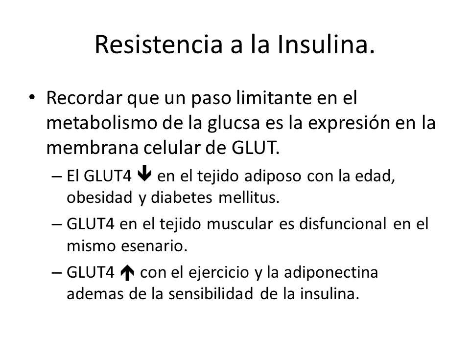 Resistencia a la Insulina.