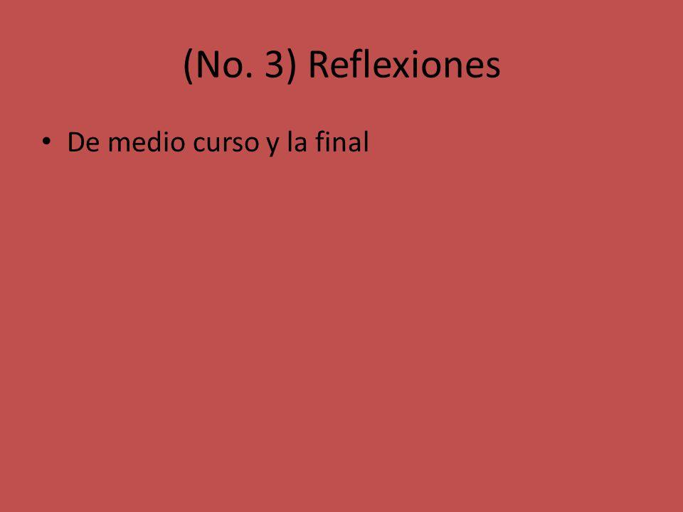 (No. 3) Reflexiones De medio curso y la final