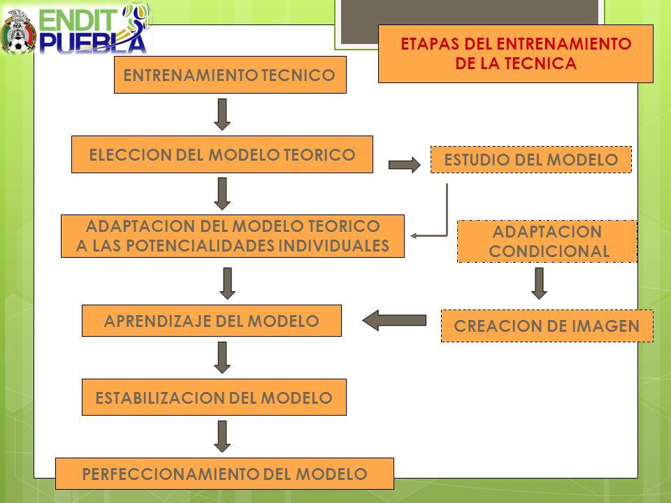CREACION DE IMAGEN ADAPTACION CONDICIONAL ESTUDIO DEL MODELO PERFECCIONAMIENTO DEL MODELO ESTABILIZACION DEL MODELO APRENDIZAJE DEL MODELO ADAPTACION