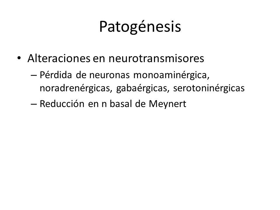 Patogénesis Alteraciones en neurotransmisores – Pérdida de neuronas monoaminérgica, noradrenérgicas, gabaérgicas, serotoninérgicas – Reducción en n ba