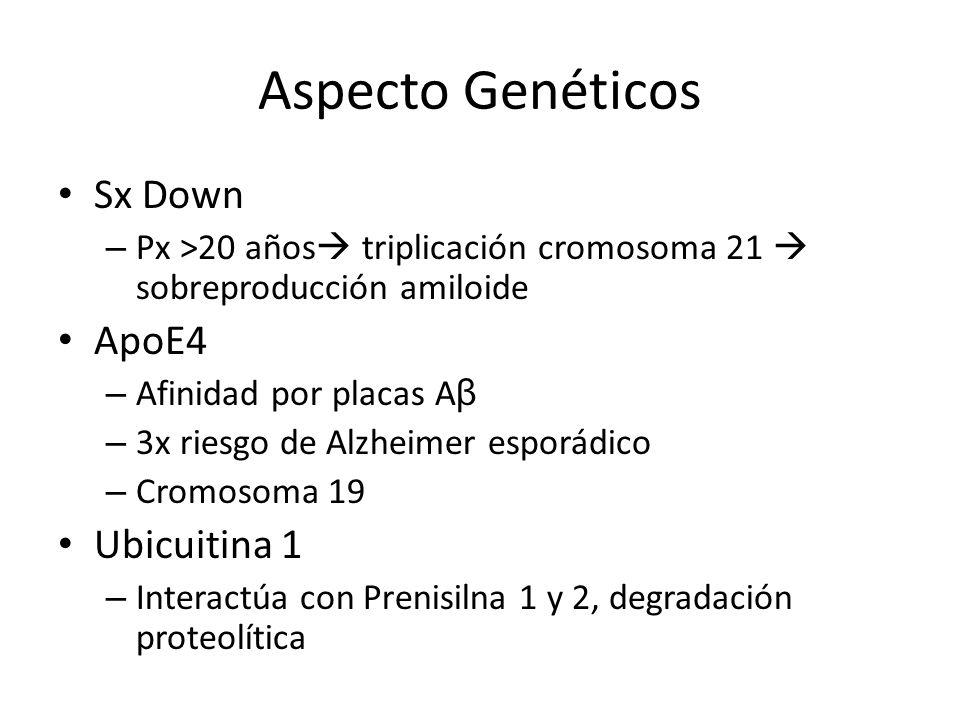 Aspecto Genéticos Sx Down – Px >20 años triplicación cromosoma 21 sobreproducción amiloide ApoE4 – Afinidad por placas A β – 3x riesgo de Alzheimer es