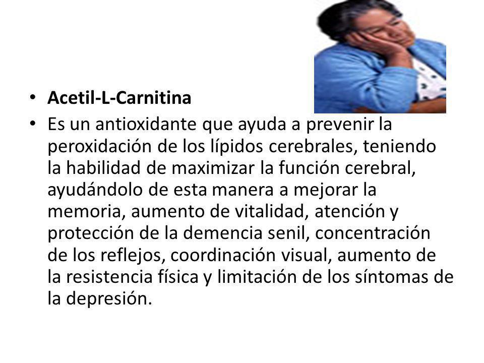 Acetil-L-Carnitina Es un antioxidante que ayuda a prevenir la peroxidación de los lípidos cerebrales, teniendo la habilidad de maximizar la función ce