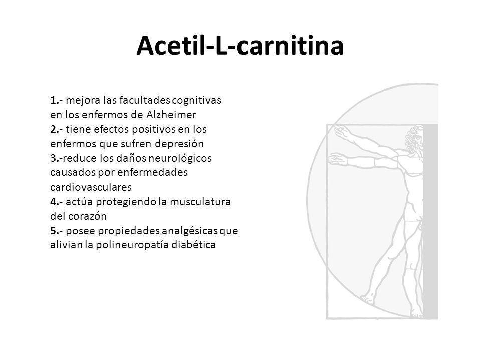 Acetil-L-carnitina 1.- mejora las facultades cognitivas en los enfermos de Alzheimer 2.- tiene efectos positivos en los enfermos que sufren depresión