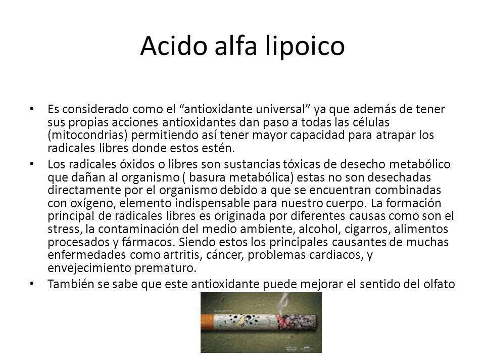 Acido alfa lipoico Es considerado como el antioxidante universal ya que además de tener sus propias acciones antioxidantes dan paso a todas las célula