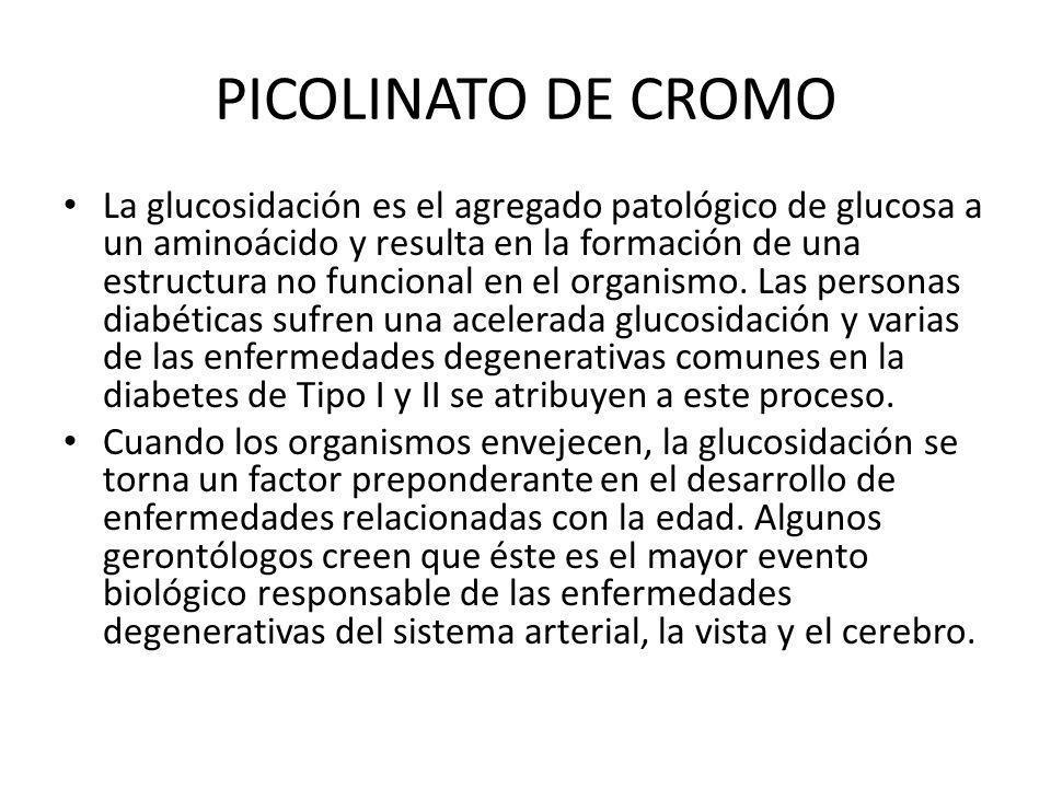 PICOLINATO DE CROMO La glucosidación es el agregado patológico de glucosa a un aminoácido y resulta en la formación de una estructura no funcional en