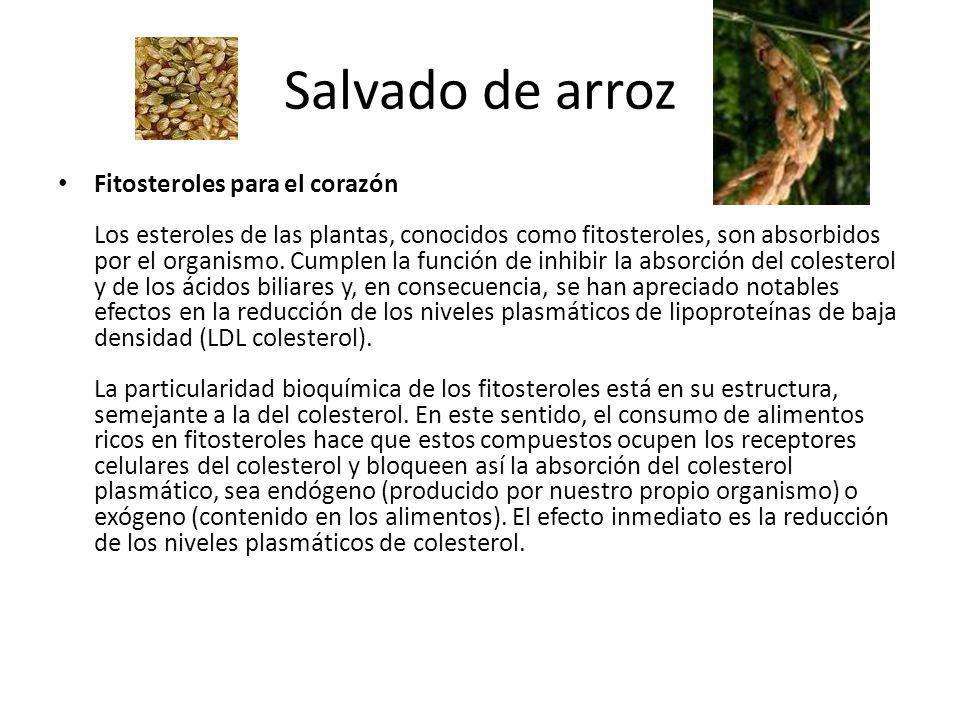 Salvado de arroz Fitosteroles para el corazón Los esteroles de las plantas, conocidos como fitosteroles, son absorbidos por el organismo. Cumplen la f