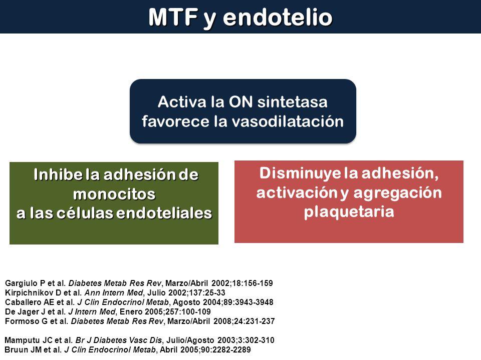 Mamputu JC et al. Br J Diabetes Vasc Dis, Julio/Agosto 2003;3:302-310 Bruun JM et al. J Clin Endocrinol Metab, Abril 2005;90:2282-2289 MTF y endotelio