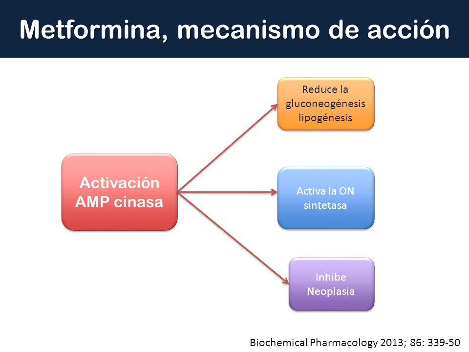 Metformina, mecanismo de acción Activación AMP cinasa Activación AMP cinasa Reduce la gluconeogénesis lipogénesis Reduce la gluconeogénesis lipogénesi