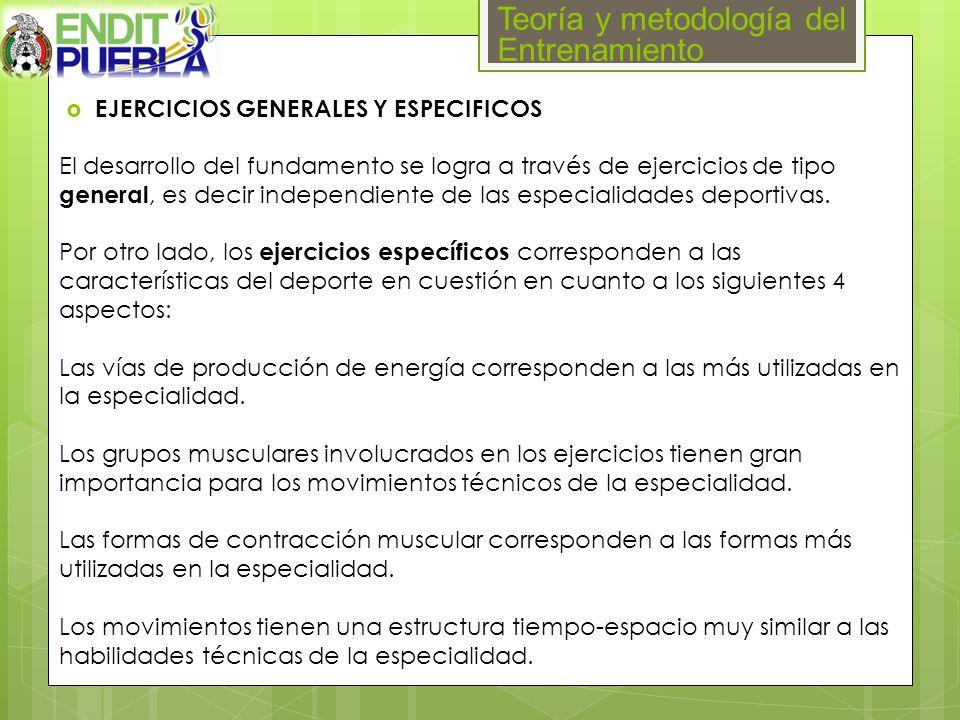 Teoría y metodología del Entrenamiento EJERCICIOS GENERALES Y ESPECIFICOS El desarrollo del fundamento se logra a través de ejercicios de tipo general