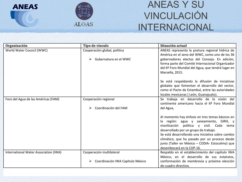 ANEAS Y SU VINCULACIÓN INTERNACIONAL