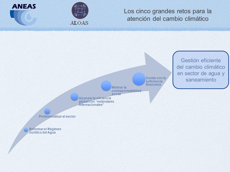 Los cinco grandes retos para la atención del cambio climático Reformar el Régimen Jurídico del Agua Profesionalizar al sector Alcanzar la eficiencia global con estándares internacionales Motivar la corresponsabilidad social Contar con la suficiencia financiera Gestión eficiente del cambio climático en sector de agua y saneamiento