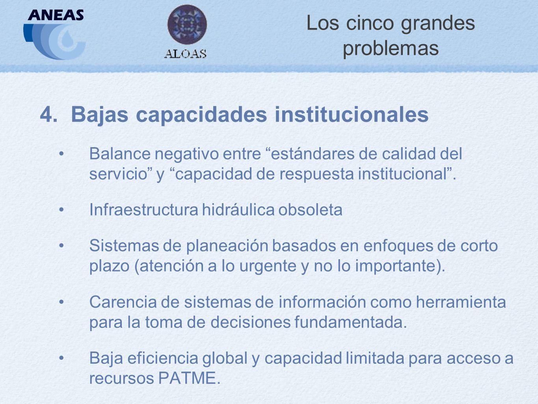 Los cinco grandes problemas 4.Bajas capacidades institucionales Balance negativo entre estándares de calidad del servicio y capacidad de respuesta institucional.