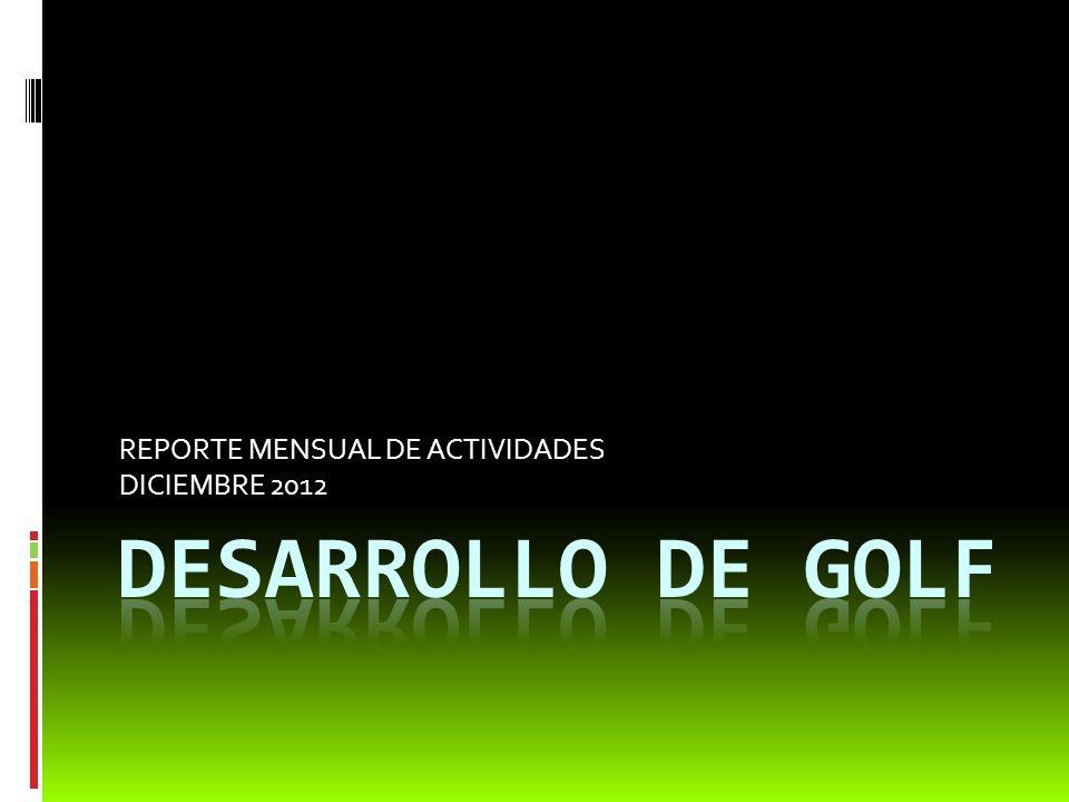 REPORTE MENSUAL DE ACTIVIDADES DICIEMBRE 2012