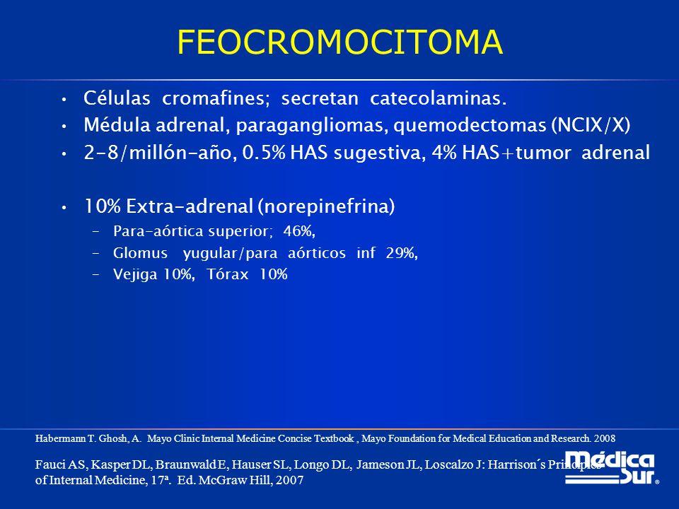 FEOCROMOCITOMA Células cromafines; secretan catecolaminas. Médula adrenal, paragangliomas, quemodectomas (NCIX/X) 2-8/millón-año, 0.5% HAS sugestiva,