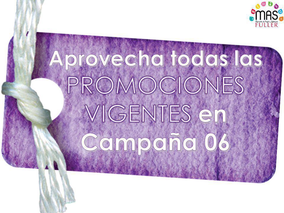 Campaña 06