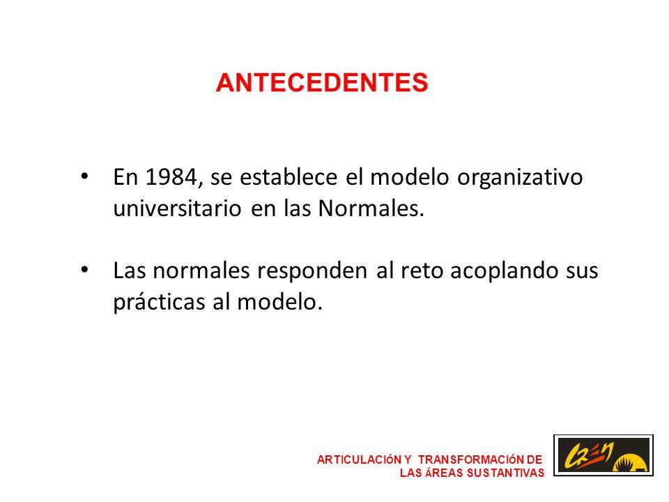 ARTICULACI Ó N Y TRANSFORMACI Ó N DE LAS Á REAS SUSTANTIVAS ANTECEDENTES En 1984, se establece el modelo organizativo universitario en las Normales.