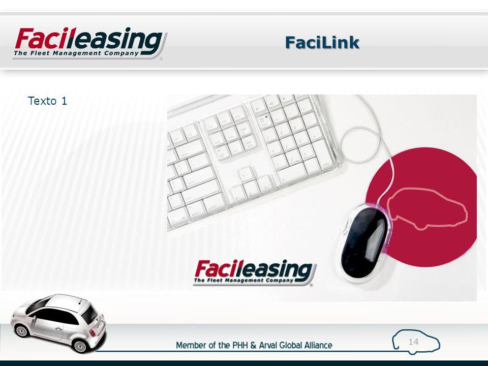 FaciLink 14 Texto 1