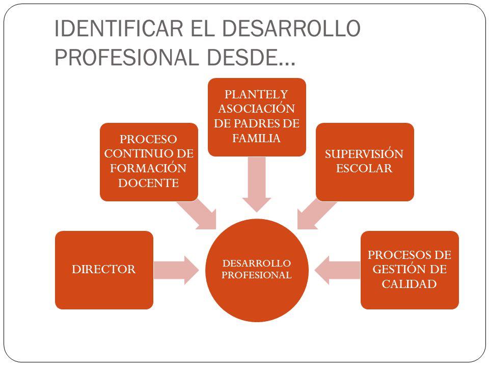 IDENTIFICAR EL DESARROLLO PROFESIONAL DESDE… DESARROLLO PROFESIONAL DIRECTOR PROCESO CONTINUO DE FORMACIÓN DOCENTE PLANTEL Y ASOCIACIÓN DE PADRES DE FAMILIA SUPERVISIÓN ESCOLAR PROCESOS DE GESTIÓN DE CALIDAD