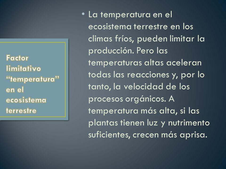 La temperatura en el ecosistema terrestre en los climas fríos, pueden limitar la producción. Pero las temperaturas altas aceleran todas las reacciones